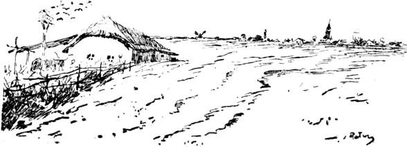 szarvasmarha papillomatosis