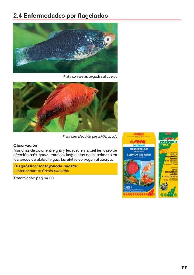 mellékhatások pinworms