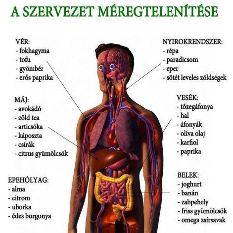 rezonancia a paraziták kezelésére