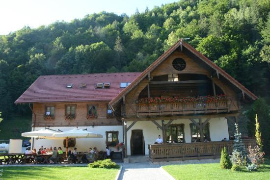méregtelenítő üdülőhely románia