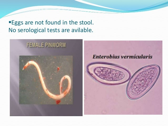 Enterobiosis szuszpenzió
