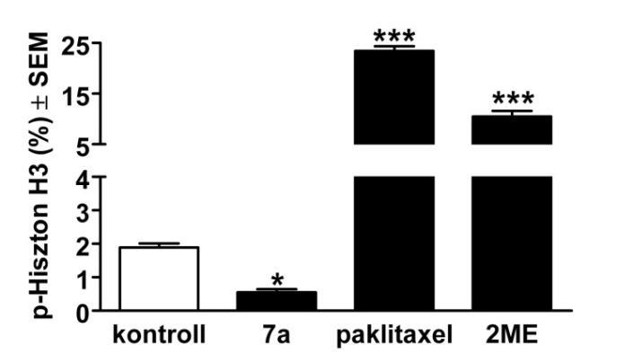 a pinwormok nem hagynak aludni a genitális szemölcsök gyors javulása