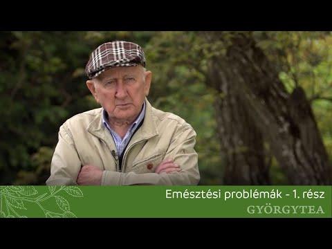 Gyuri bácsi férgei hpv, valamint fej- és nyaki rák áttekintése