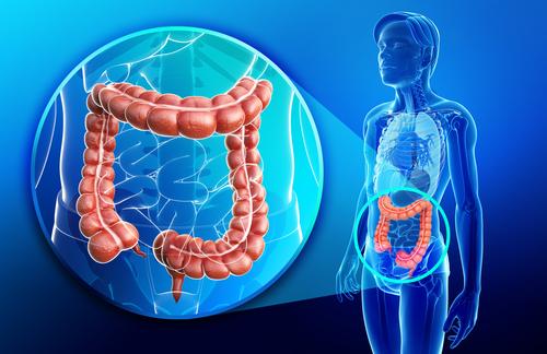 crijevni helminti hpv magas kockázatú thinprep